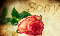 Rose1271216_640