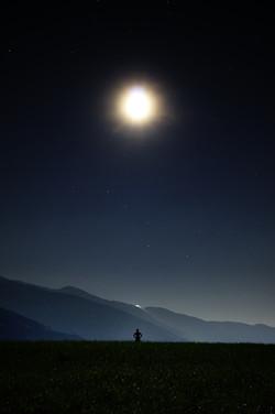 Night913046_640