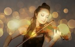 Violin1906127_640