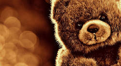 Bear1824882_640