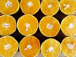 Oranges2087113_640