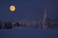 Snow3028621_640