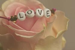 Love3388626_640