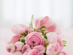 Roses142876_640